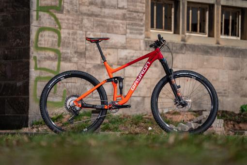 "Bike Check: Custom 12,8 kg Qayron Carma TR 29"""